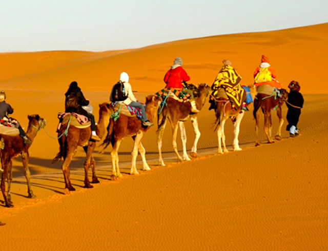 camel rides in the desert on a Morocco yoga retreat